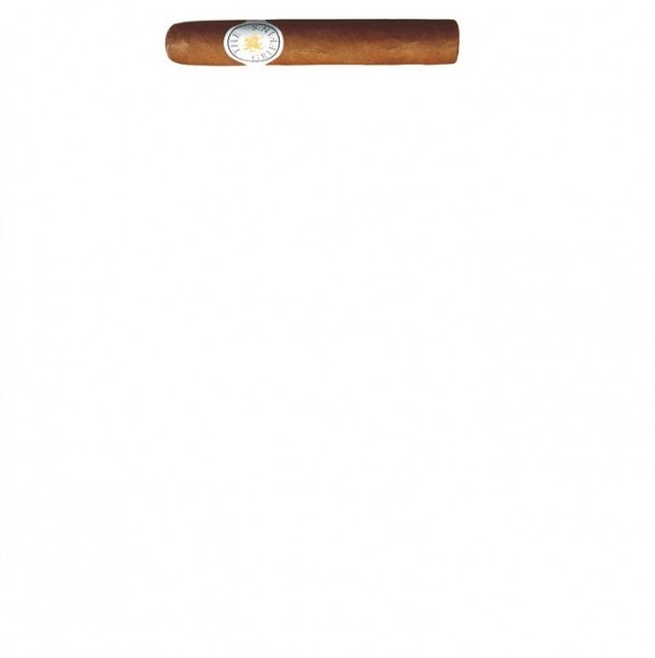 GRIFFIN´S Robusto