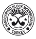 Altinay-Logo